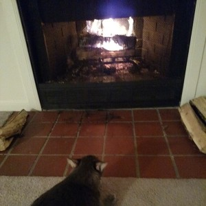 2015-03-07 Casey fireplace