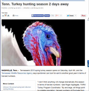 2015-04-02 turkey hunting season story